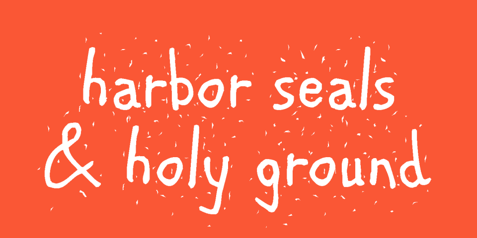Harbor Seals and Holy Ground